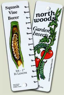 identification guide to garden insects